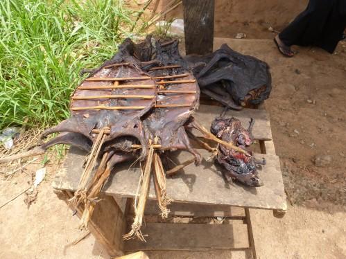 Bushmeat_-_Buschfleisch_Ghana